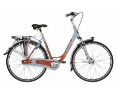 Mestský bicykel s nosičom