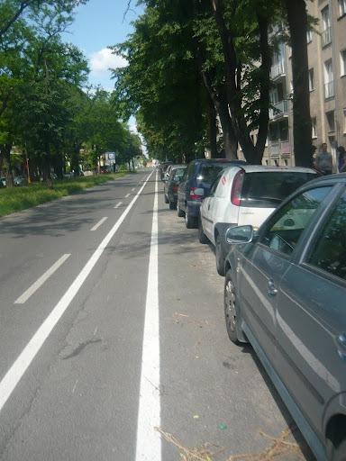 zvľava: jazdný pruh, bezpečný odstup, cyklistický pruh, bezpečný odstup (dverová zóna), parkovací pruh